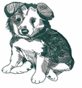 bordercollie056 Border Colllie (small or large design)