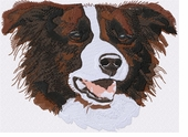 bordercollie077 Border Collie (small and large design)