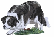 bordercollie103 Border Collie (small or large design)