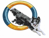 bordercollie58 Border Collie (small or large design)