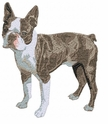 boston002 Boston Terrier (small or large design)