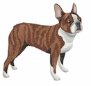 boston010 Boston Terrier (small or large design)