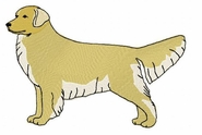 golden005 Golden Retriever (small or large design)