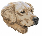 golden010 Golden Retriever (small or large design)