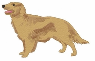 golden020 Golden Retriever (small or large design)