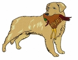 golden059 Golden Retriever (small or large design)