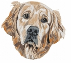 golden106 Golden Retriever (small or large design)