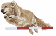 golden111 Golden Retriever agility (small or large design)