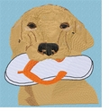 golden114 Golden Retriever with flip flop (small or large design)