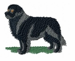 newf002 Newfoundland (small or large design)