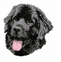 newf005 Newfoundland (small or large design)