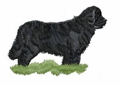 newf006 Newfoundland (small or large design)