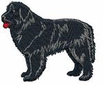 newf008 Newfoundland (small or large design)