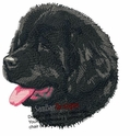 newf012 Newfoundland (small or large design)