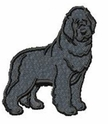 newf028 Newfoundland (small or large design)