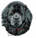 newf030 Newfoundland (small or large design)