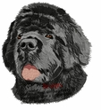 newf031 Newfoundland (small or large design)