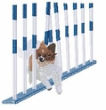 pap014 Agility Papillon Weaving (small or large design)