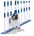 pap016 Agility Tri Colored Papillon Weaving (small or large design)