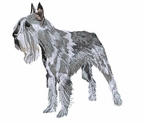 schnauzer033 Schnauzer (small or large design)