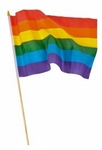 "12"" X 18"" Handheld Rainbow Flag"