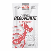 Hammer Nutrition Recoverite Protein Recovery Drink - Box of 6 Single Servings