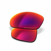 Oakley Twenty Iridium OO Polarized Replacement Lenses