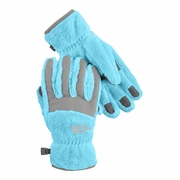 The North Face Denali Thermal Cold Weather Glove - Girl's