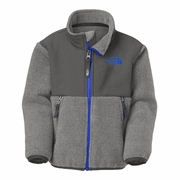 The North Face Toddler Denali Fleece Jacket - Boy's
