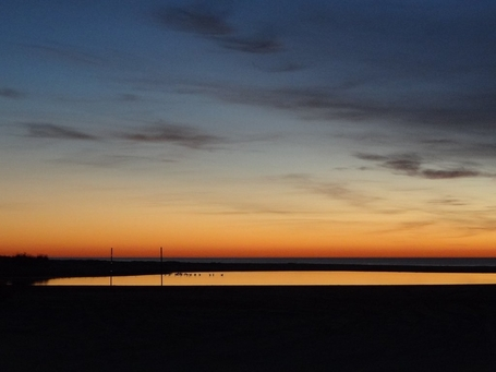 willapa bay sunset 1