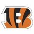 Window Graphic Die Cut Film - Cincinnati Bengals
