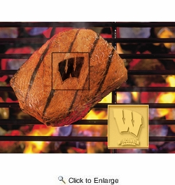 Fan Mats 10126  University of Wisconsin Badgers Fan Brand Barbecue Logo Branding Iron
