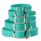 Aqua Leather Dog Collars & Leashes