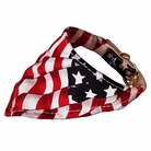 Bandana Dog Collar:  America the Beautiful