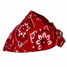 Bandana Dog Collar:  Red Western
