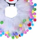 Birthday Fuzzy Wuzzy Party Dog Collar