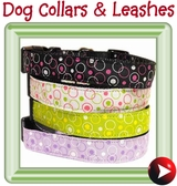 - collars & leashes