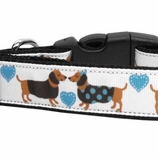 Doxie Love Dog Collars & Leashes