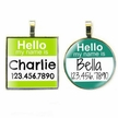 Hello My Name Is... Pet ID Tag