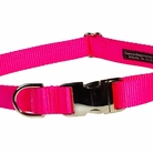Neon Pink Dog Collars, Harnesses & Leashes