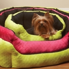 Plush Dimple Dog Bed