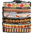 �Pumpkin� Collection Dog Collars & Leashes