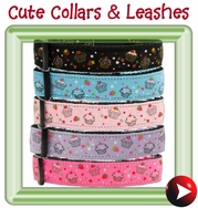 - cute & trendy collars & leashes