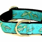 Sea Turtles Dog Collars