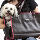 Soft Chocolate Pink Trim Dog Carrier