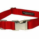 Solid Red Dog Collars, Harnesses & Leashes