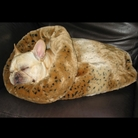 Animal Print Trundle Dog / Cat Bed