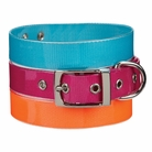 Waterproof Dog Collars & Leashes