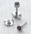 89027 February Stainless Steel Bezel Universal Ear Piercing Stud - doz pr