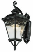 Braided 1 Light Coach Lantern shown in Black by Trans Globe Lighting